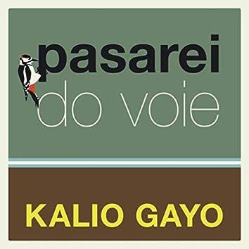 Pasarei Do Voie (Live)