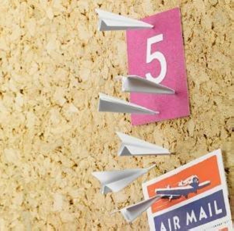 Design Ideas Paper Airplane Pushpins by Design Ideas