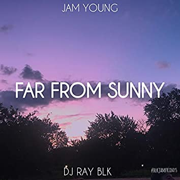 Far from Sunny (feat. DJ Ray BLK)