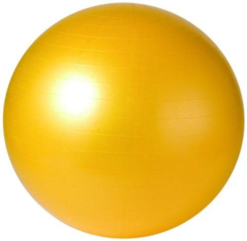 サクライ貿易(SAKURAI) PRO-WING(プロウイング) フィットネス バランスボール ノンバーストフィット ネスボール 55cm イエロー PWF-55