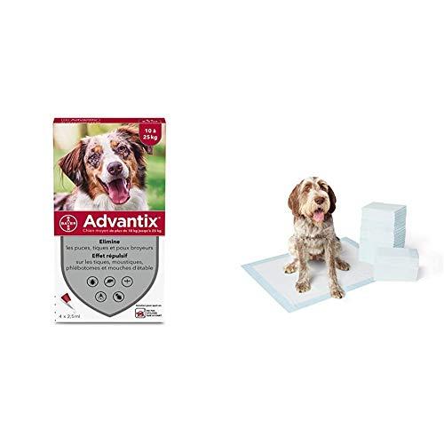 Advantix Spot-on per Cani dai 10Kg ai 25Kg - 4 pipette da 2.5ml & Amazon Basics Tappetini assorbenti per animali domestici, extra-large