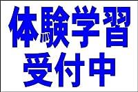 シンプル看板Lサイズ 「体験学習受付中(紺)」<スクール・塾・教室>屋外可