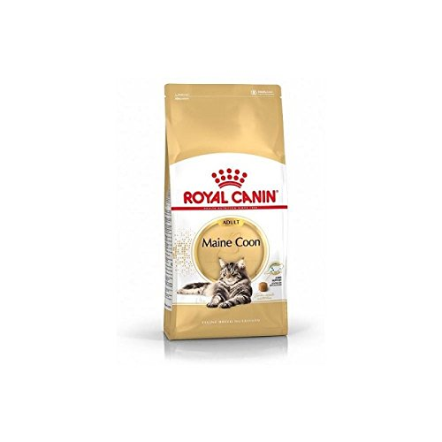 Royal Canin C-58640 Maine Coon - 4 Kg