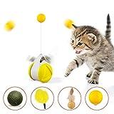 Yiomxhi Juguete del coche del columpio del equilibrio del gato,juguete de la bola auto-giratorio,Juguete de la hierba gatera Juguete de la pluma del gato Juguete interactivo de la persecución del gato
