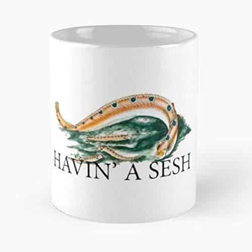Havin' A Sesh Absolutely Torqued Fish Classic Mug,11 Oz.