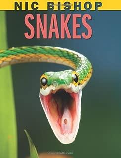 Nic Bishop: Snakes