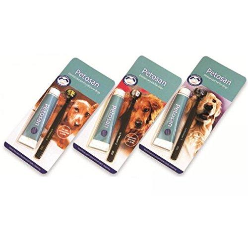 Zahnbürste & Zahnpasta 1 Set, S - für Hunde unter 6 kg