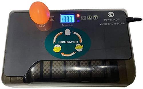 AJLDN Incubadora de Huevos, Digital Incubadora Automática de 12 Huevos con Control de Temperatura Incubadora Automática para Incubar Huevos de Gallina de Codorniz de Ganso,B