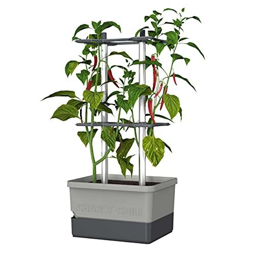 Charly Chili - Chilitopf - 4,5 L Wassertank mit Bewässerungssystem - stabile, Innovative Rankhilfe - 10 L Erdvolumen - für Chili, Paprika, Auberginen - Pflanzgefäß Blumentopf Pflanzturm (Hellgrau)