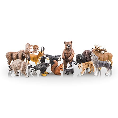 TOYMANY 12PCS North American Forest Animal Figurines, Realistic Safari Animal Figures Set Includes Raccoon,Lynx,Wolf,Bear,Eagle, Educational Toy Cake Toppers Christmas Birthday Gift for Kids Toddlers