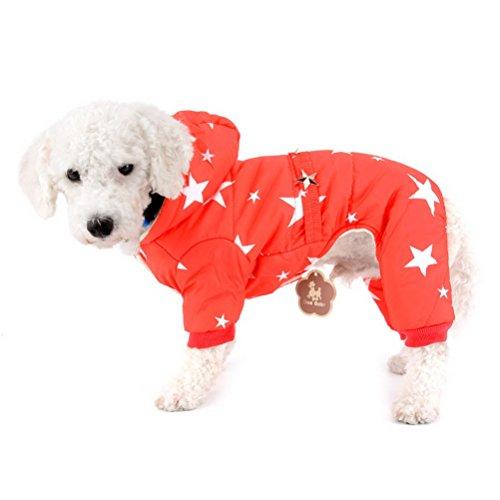 Zunea Wintermantel für kleine Hunde mit Kapuze, Fleecefutter und Sternengürtel Wasserdicht Schneeanzug warm Hundebekleidung Kapuzenpullis Overall für Katzen Welpen Chihuahua Rot XL