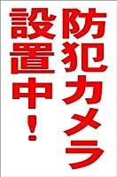 シンプル縦型看板 「防犯カメラ設置中(赤)」その他 屋外可(約H45.5cmxW30cm)