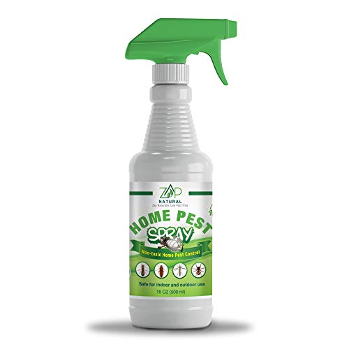 ZapNatural Pest Control Spray, 16 oz, Natural Repellant Kills Ants, Mosquitos, Roaches and Spiders, Child and Pet Safe Repeller, Indoor Outdoor Use, Non-Toxic and Odorless