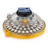 ZXXUEE Digital Eier Inkubator Brutmaschine Vollautomatisch, 24 Eier Haushalt automatisch drehende...