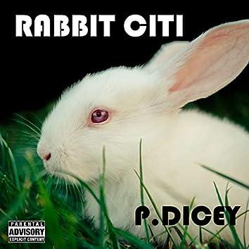 Rabbit Citi
