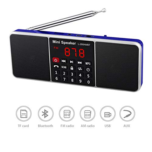 Great Features Of RUIHUA Portable Digital AM FM Radio,Bluetooth Speaker,Stereo MP3 Player TF/SD Card...