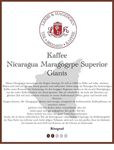 Nicaragua Maragogype Superior Giants Kaffee 1kg