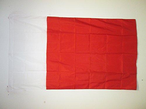 AZ FLAG Flagge EMIRAT Dubai 90x60cm - Dubai Fahne 60 x 90 cm Scheide für Mast - flaggen Top Qualität