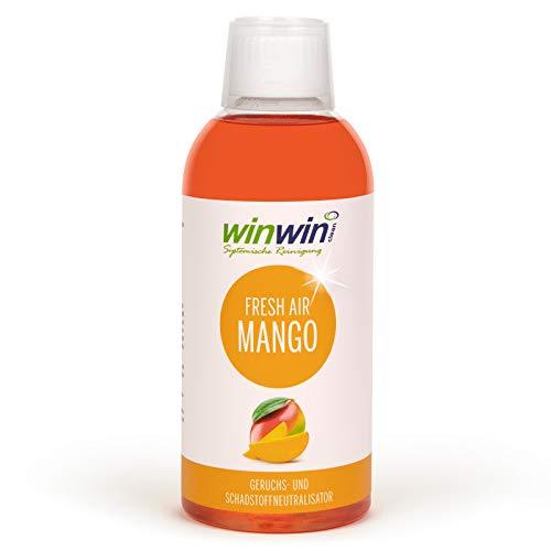 winwin clean Systemische Reinigung winwinCLEAN Luftreinigungs-Konzentrat Fresh Air Mango 500ml