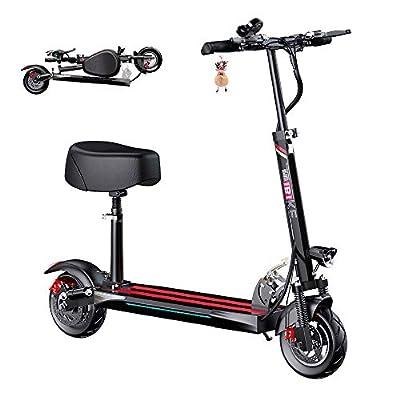 segway-ninebot e22e electric scooter