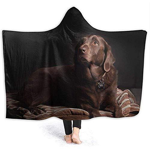 Biubiu-Shop Brown Labrador Retriever Hoodie Deken Coral pluche Ultra Soft pluche Sherpa gevoerd vrijetijdskleding Hooded Throw Wrap 60 x 50 inch