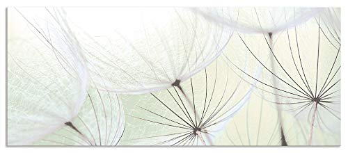 Artland Spritzschutz Küche aus Alu für Herd Spüle 120x50 cm Küchenrückwand mit Motiv Blume Pusteblume Landschaft Natur Zen Modern Hell Grün S9MV
