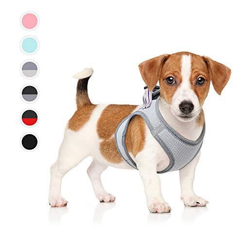 HEELE Hundegeschirr Einstellbare Anti Zug Geschirr Reflektierend Atmungsaktiv Geschirr Hunde Leichtes Brustgeschirr Kleine Hunde für Gehen, Laufen, Training, Grau, M