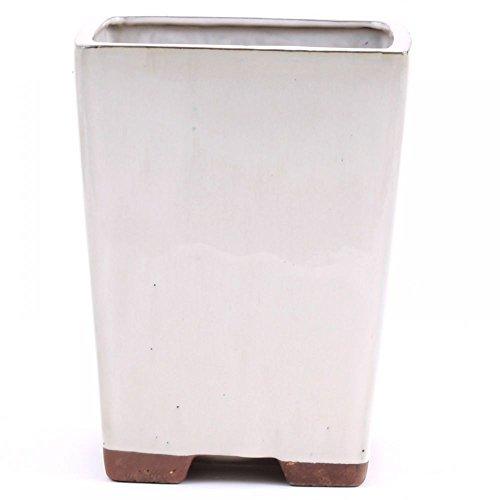 Bonsaï – Cascade rigide WS-50047 18 x 18 x 23 cm, crème