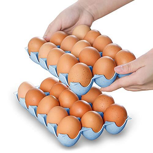 HansGo Eierhalter für Kühlschrank, Deviled Egg Tray Carrier mit Deckel Kühlschrank Eieraufbewahrung stapelbar Kunststoff Eierbehälter medium Egg Tray