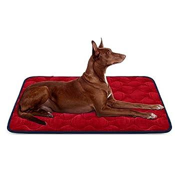 Hero Dog Panier Doux pour Chien, Lit Coussin de et Durable 107x70 cm, Tapis Antidérapant et Lavable de Chien (Rouge, Grande Taille)