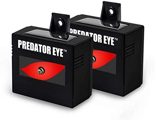 Comforday - Repelente Solar (2 Unidades, Resistente al Agua, con Control, Animales nocturnos), Color Negro
