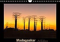 Madagaskar - Insel der Lemuren (Wandkalender 2022 DIN A4 quer): Aufnahmen von einzigartigen Landschaften und Tieren. (Monatskalender, 14 Seiten )
