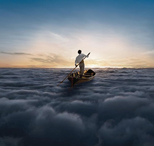 Price comparison product image The Endless River