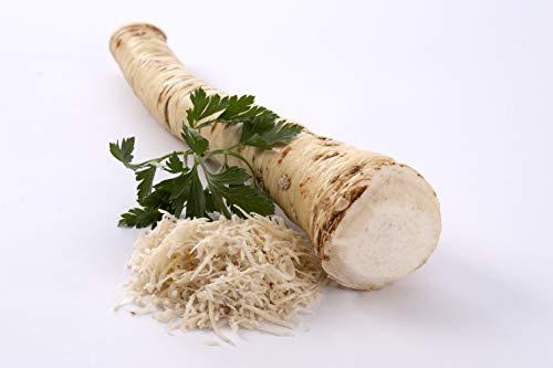 Meerrettich | Kren | Horseradish - Frische Stangenware (gewaschen, 250 - 300 g)