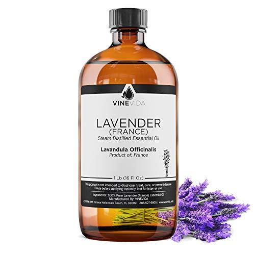 Bulk Lavender (France) Essential Oil – 16 Oz Lavender Essential Oil in Glass Bottle - 100% Pure & Undiluted Essential Oil - 1 Pound Lavender Oil for DIY Soaps, Candles, & Blends - VINEVIDA