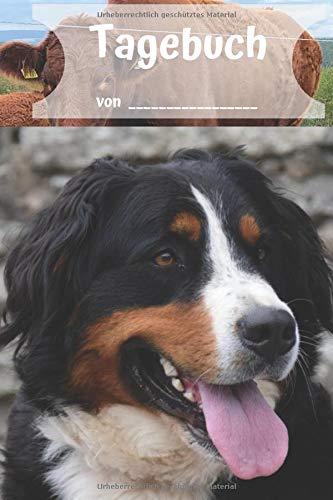Tagebuch von: Dein Bernersennenhund Buch für alle Notizen. Notizbuch für Hunde. Für die Notizen und Bilder deines Tages, Notizheft im coolen Design, Punkteraster,120 Seiten,