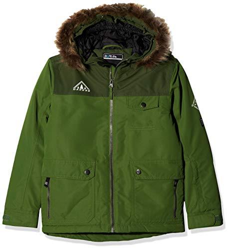 Dare 2b kinderen roekeloos en ademend faux bont capuchon kinderen ski waterdichte geïsoleerde jas