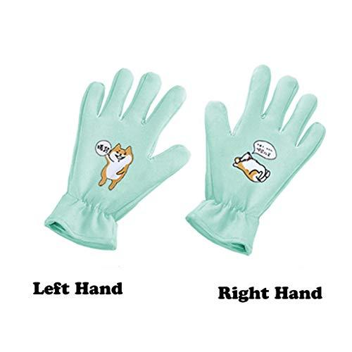 Wwjpet Pet Grooming Handschoen voor Katten Honden En Paarden Huisdier Haarverwijderaar met Massage Borstel voor Lange Haarvergieten Elastische Opening Zacht En Snel Off Of Op