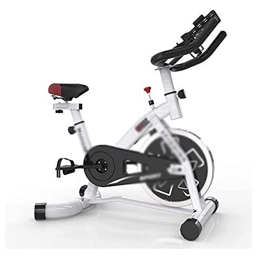 DJDLLZY Ciclismo Indoor Bike con Volante Cromado, Doble Sienta Resistencia Pad con enjaulado Pedales Equipo de Deporte