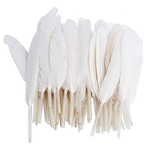 100 Stück 10-15 cm Länge Gänsefedern Echte Naturfedern Gans Federn für Hochzeit Kostüm Hüte Basteln Dekor Weiß