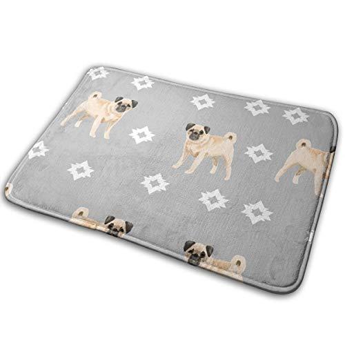 Voetmat, cadeau voor liefhebbers, voor honden, 16 x 24 cm, voor binnen/buiten/ingangsdeur/badkamer
