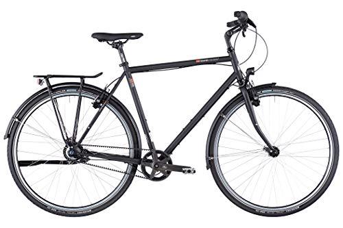 vsf fahrradmanufaktur T-300 Shimano Nexus 8-G HS22 Gates Trekking Bike 2020 (28