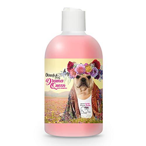 The Blissful Dog Fawn French Bulldog Drama Queen Dog Shampoo, 4-Ounce