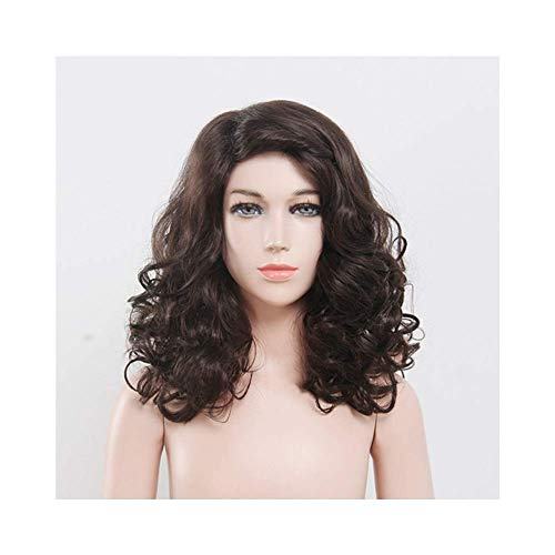 ZLININ Y-longhair Brown Long Curly Wig With Inclined Bangs Synthetic Wig For Women Natural Looking Daily Party Wigs (Color : Brown)