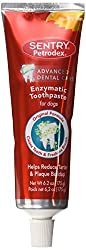 Petrodex Enzymatic Toothpaste Dog Poultry Flavor - Best Dog Teeth Cleaning Products