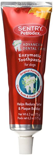 Petrodex Advanced Dental Care Enzymatic Dog Toothpaste, 6.2oz.