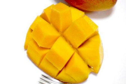宮崎産 完熟マンゴー 1玉 4Lサイズ
