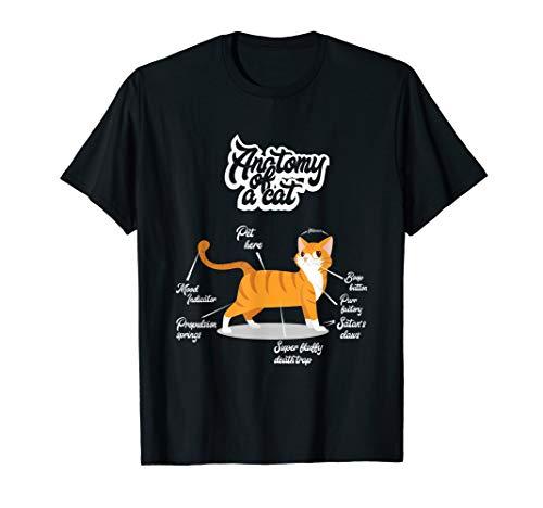 Orange Tabby Cat T-Shirt | Anatomy of a Cat Cute Present