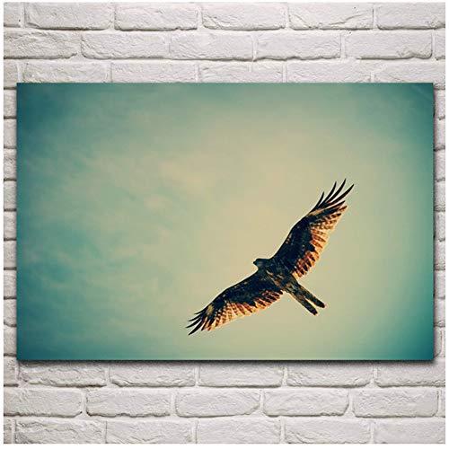 havik adelaar vliegen roofdier vogel dier vrijheid artwork woonkamer decor thuis muur decor posters cadeaus voor ouders en vrienden-60x80cm No Frame