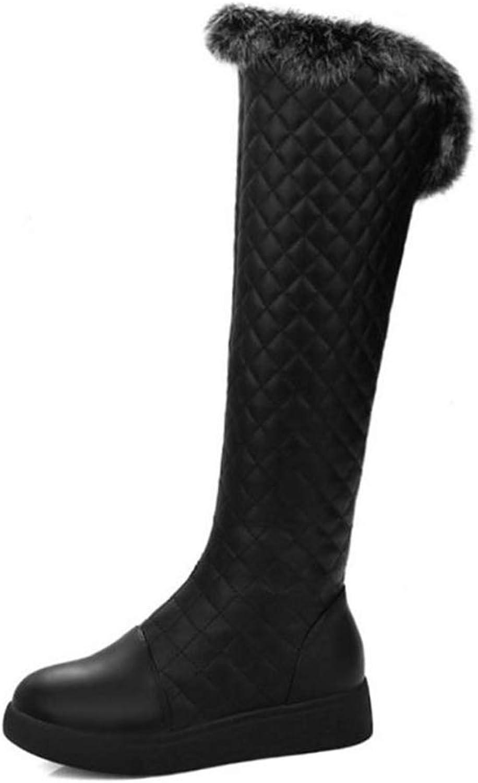 Webb Perkin Women Thicken Plush Winter Warm Fashion Casual Boots Zipper Flats Snow shoes Lady Knee High Boots